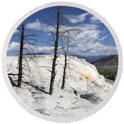 Travertine Terrace And Dead Trees Round Beach Towel