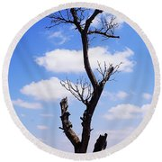 Tree 8 Round Beach Towel