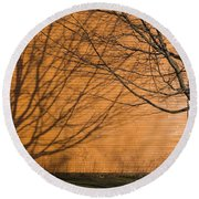 Tree And Shadow At Cogswells Grant Round Beach Towel