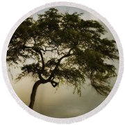 Tree And Stormy Sky Round Beach Towel