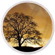 Tree At Golden Sunrise Round Beach Towel