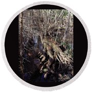 Tree Roots At The River Round Beach Towel