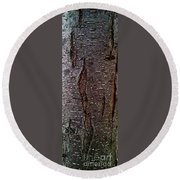 Tree Bark To The Left Round Beach Towel