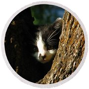 Tree Cat Round Beach Towel