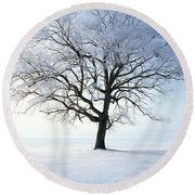 Tree Covered In Hoar Frost Round Beach Towel