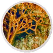 Tree In A Park Hot Springs Round Beach Towel