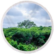Marula Tree In African Sky Round Beach Towel