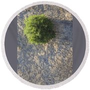 Tree In Grass From Balloon Round Beach Towel