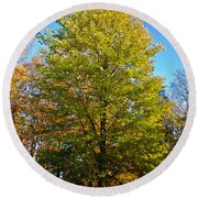 Tree In The Cemetery Round Beach Towel