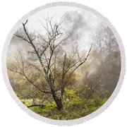 Tree In The Fog Round Beach Towel