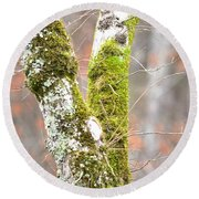 Tree Moss Abstract Round Beach Towel