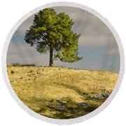 Tree On A Hill Vertical Round Beach Towel