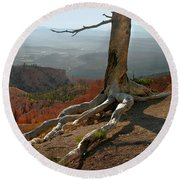 Tree On A Ridge In Bryce Canyon  Round Beach Towel