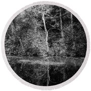 Tree Reflection In Chesapeake And Ohio Canal Round Beach Towel