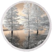 Tree Reflections Round Beach Towel by Jane Linders