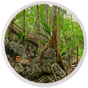 Tree Roots On Rock Round Beach Towel