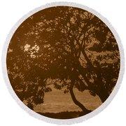Tree Silhouettes Round Beach Towel