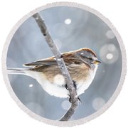 Tree Sparrow In The Snow Round Beach Towel