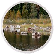 Tree Stumps At Clear Lake Round Beach Towel