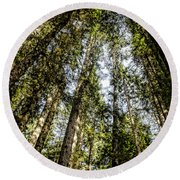 Tree Tops Round Beach Towel