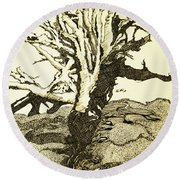 Tree Trunk By The Sea Round Beach Towel