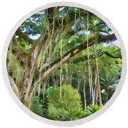 Tree-waimea Arboretum Round Beach Towel