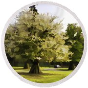 Tree With Large White Flowers Round Beach Towel