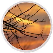 Trees Ablaze In Autumn Round Beach Towel