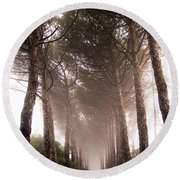Trees And Mist Round Beach Towel