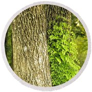 Trees At My Window Round Beach Towel