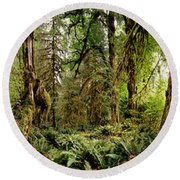 Trees At Olympic National Forest Round Beach Towel