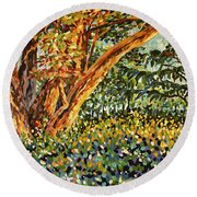 Trees At Sunset In Lafayette Park Round Beach Towel