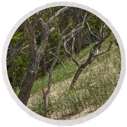 Trees At The Edge Of A Dune At Silver Lake Round Beach Towel