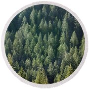 1a9502-trees Lit Up, Wy Round Beach Towel