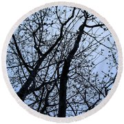 Trees From Below Round Beach Towel