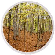 Trees In A Forest, Stephen A. Forbes Round Beach Towel