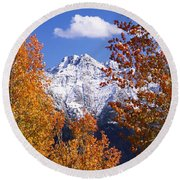 Trees In Autumn, Colorado, Usa Round Beach Towel