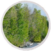 Trees On A Lakeshore Round Beach Towel