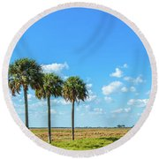 Trees On Landscape, Florida, Usa Round Beach Towel