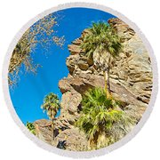 Trees On South Side Of Andreas Canyon In Indian Canyons-ca Round Beach Towel