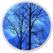Trees So Tall In Winter Round Beach Towel