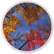 Treetops In Fall Forest Round Beach Towel