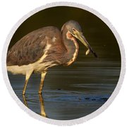 Tricolored Heron With Fish Round Beach Towel