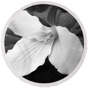 Trillium Flower In Black And White Round Beach Towel