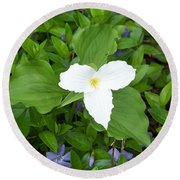 Trillium - White Beauty Round Beach Towel