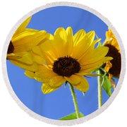 Trio In The Sun - Yellow Daisies By Diana Sainz Round Beach Towel
