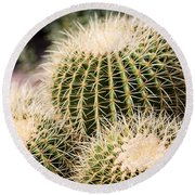 Triple Cactus Round Beach Towel