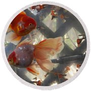 Triple Tail Goldfish Round Beach Towel