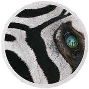 Trophy Hunter In Eye Of Dead Zebra Round Beach Towel