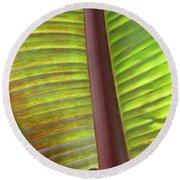 Tropical Banana Leaf Abstract Round Beach Towel